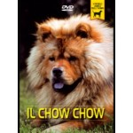 IL CHOW CHOW
